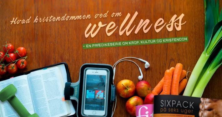 Prædiken om wellness og kristendom